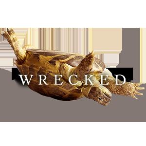 Wrecked Tortoise