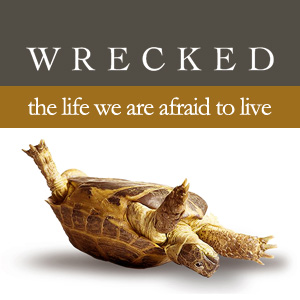 Wrecked Turtle